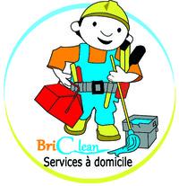 briclean Service