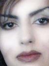 sany falahian