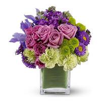 flowers next