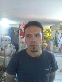 arash talebi