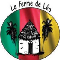 Emilie La ferme de Léo
