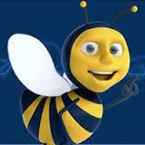 Social Bee Design