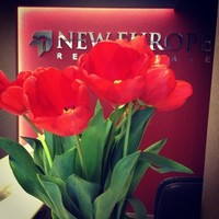 New Europe Real Estate Agency