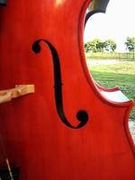 pino cazzaniga luthier