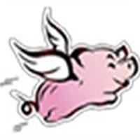 pig flytech