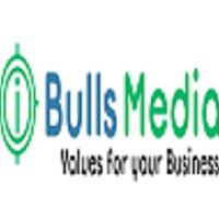 iBulls Media