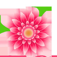 sheya flowers