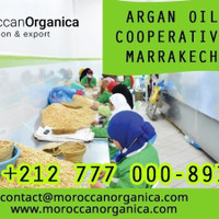organica Group sarl