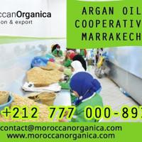organica Group sarl