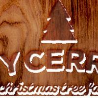 Ty Cerrig Christmas Tree