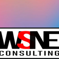 WSNE  Consulting