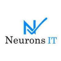 neurons it