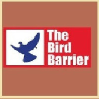 The Bird Barrie India
