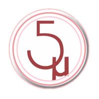 5 Microns Inc.