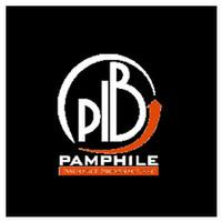 Pamphile  Insurance