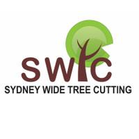 Sydney Wide Tree Cutting