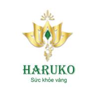 VN Haruko