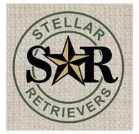 Stellar Retrievers