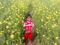 Balaram Biswas
